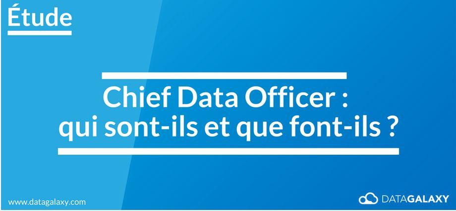 DataGalaxy : Les Chiefs Data officer (CDO) : étude sur une fonction émergeanteCDO
