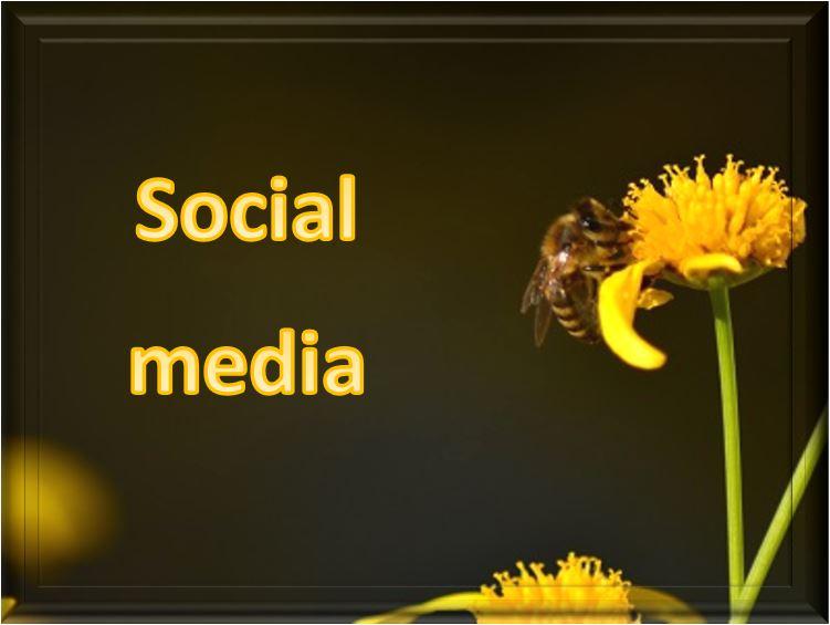 Social media : amplifier l'information et s'adresser à l'ensemble de ses cibles